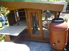 chicken coop barrel
