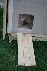 chicken coop building kits