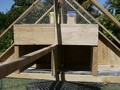chicken coop cubbies