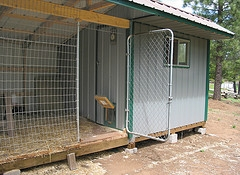 chicken coop doors