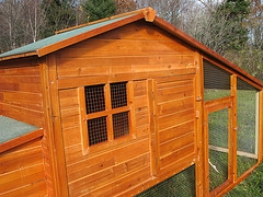 chicken coop for winter