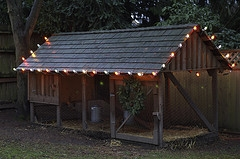 chicken coop lights