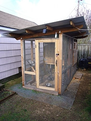 chicken coop solar light