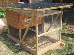 free chicken coop designs
