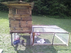 mobile chicken coop plans