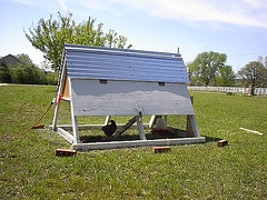 small portable chicken coops
